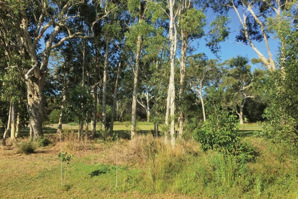 Supported Independent Living (SIL) at Peregian Springs QLD
