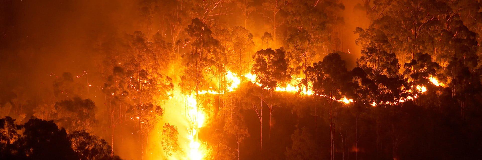 Australian bushfire in 2020