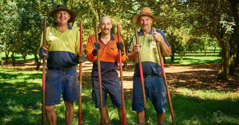 Three men in high-vis holding tools in front of green trees.